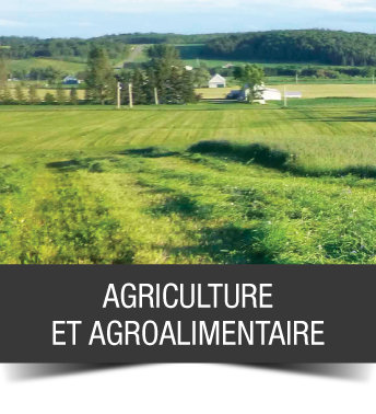 accueil_1_agriculture_agroalimentaire